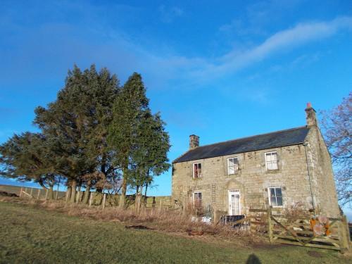 Grace's house